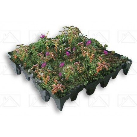GrufeKit Tiles Sedum and Wildflower with Fleece 1 SQM