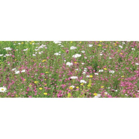 UK Green Roofing - Wildflower and Perennials Mat 1 sq.m