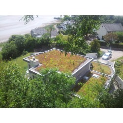 Mr Green Light Weight Flat Living Roof Kit